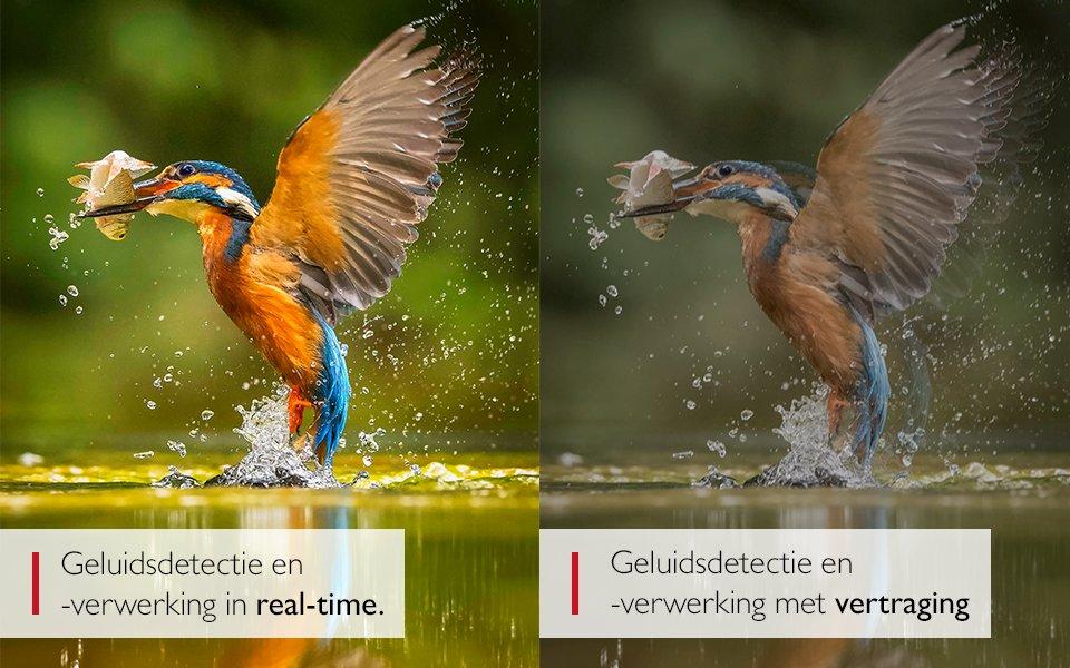 bernafon_website_text_imagespot_960x600_nl