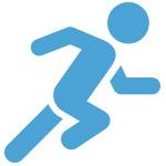 allegro_icon_fast