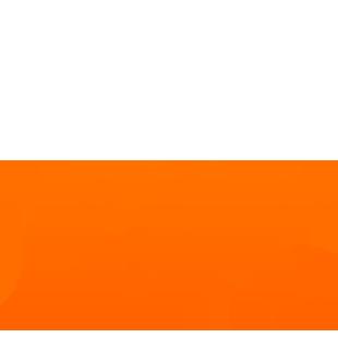 310x310-world-leader