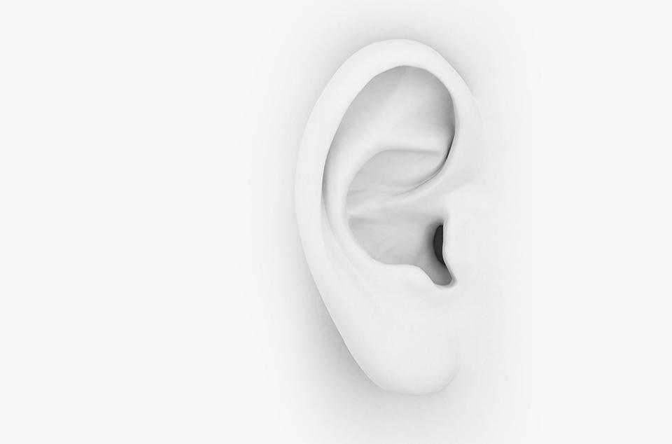 dessin d'une oreille blanche