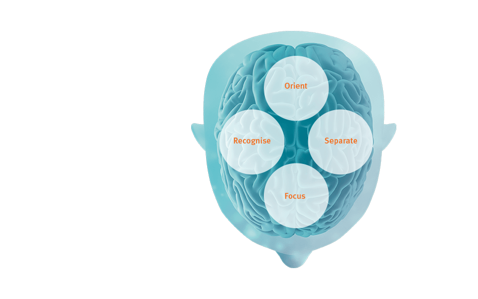 BrainHearing provides audibility and signal processing that support the brain's cognitive processes.